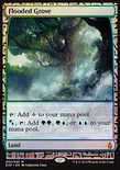 Flooded Grove - Zendikar Expeditions