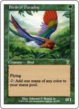 Birds of Paradise - 7th Edition