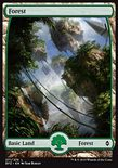 Forest (271/274) - Battle for Zendikar