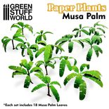 GSW Paper Plants: Musa Trees