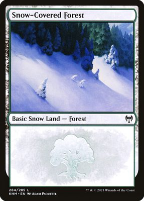 Snow-Covered Forest - Kaldheim