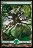 Forest (249/249)