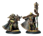 Circle Orboros Reeves of Orboros Chieftain and Standard