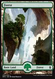 Forest (272/274) - Battle for Zendikar