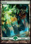 Forest (248/249) - Zendikar