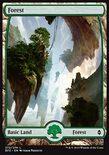 Forest (272/274) - Battle for Zendikar
