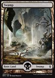 Swamp (262/274) - Battle for Zendikar