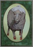 Sheep TOKEN 1/1 - Unglued
