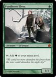 Fyndhorn Elves - From the Vault: Twenty