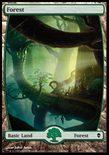Forest (246/249) - Zendikar
