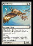 Apex Hawks - Conspiracy