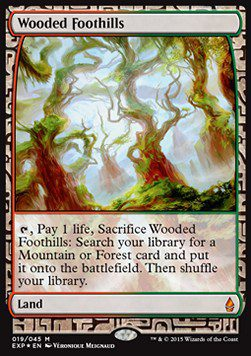 Wooded Foothills - Zendikar Expeditions