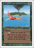 Birds of Paradise - Revised (3rd) Edition