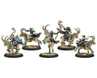 Circle Orboros Druid Mist Riders